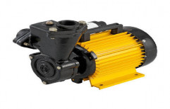 Single Phase CRI Domestic Water Pump, 0.5 Hp, Electric