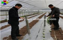 Vegetable Transplanter