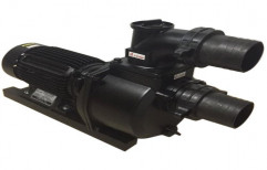 7 To 11 M Eureka 1 HP Slurry Pumps, 310 Lpm