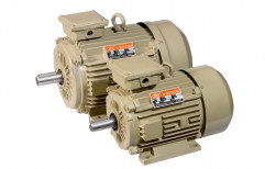 sse 3 Electric Motor - Three Phase, Voltage: 440, 1440