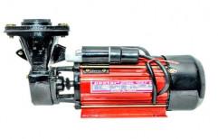 Three Phase Peetar Monoblock Pump