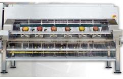 1-2 kw Mango Peeling Machine, Capacity: 20-40 kg/hr