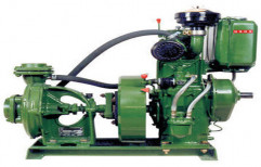 5 hp Cast Iron Diesel Pumpset for Agricultural