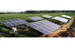 DC Solar Pump, For Agriculture