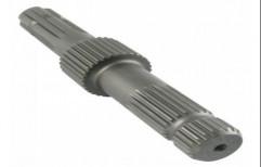 Stainless Steel Gear & Spline