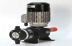 Upto 300 Lph Pp & Ss Motorized Dosing Pump