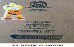 Eucalyptus Brown Black Berry MR Plywood