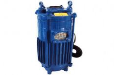 Electric 2 HP Monoblock Pump