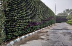 Natural Grass Green & Red Symmetric Vertical Garden, For Plantation