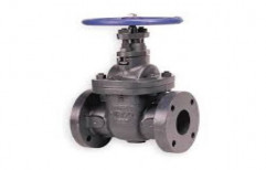 Stainless Steel Medium Pressure Valves, For Industrial, Size: 0.1 To 60 Cm