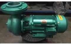 Cast Iron 2 HP Cast-iron Single Stage Centrifugal Pump