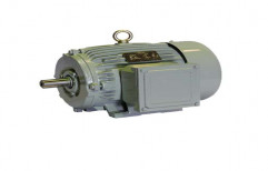 Crompton Three Phase Electric Motors, Ip Rating: 55