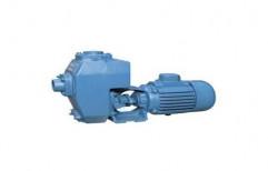 Industrial Mud Pump, Motor: 3 HP, Max Flow Rate: 9 LPS