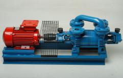 Maxima Liquid Ring Vacuum Pump