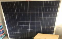 Vikram Solar A-one Quality Solar Pannel, 30w To 320w