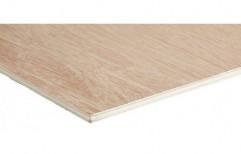 12 Mm Grey Ply Plywood Door