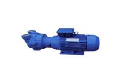 Cast Iron Water Vacuum Pump