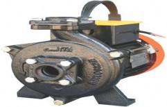 Electric Single Phase Kirloskar Pumba Puzha Pump, 0.1 - 1 HP