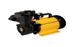 Iron Self Priming Pumps, Motor Horsepower: 0.5 hp