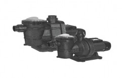 Lubi Ss Swimming Pool Pumps, For Industrial