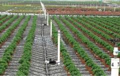 Spray Heads Indo Jerman Agriculture Sprinkler Irrigation System, for Agricultural