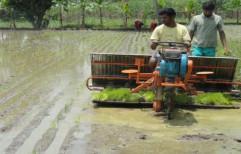 VST Yanji Shakti 8 Raw Paddy Transplanter