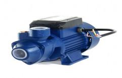 Crompton Electric Water Pump