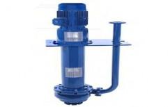 Single Phase CRI Vertical Sump Pump