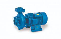 Usha Electric Water Pump 5 HP