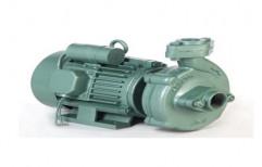 Electric Centrifugal Monoblock Pump, Voltage: 220 V