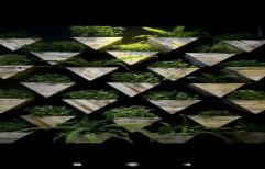 Green Plastic Pinewood Vertical Garden, For Office,Hotel