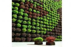 Green Vertical Garden, For Home,Office