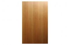 Standard Readymade Plain Wooden Door