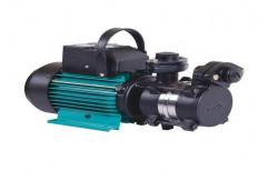 Cast Iron Single Phase Domestic Monoblock Pump, 1 Hp, Electric