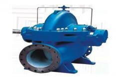 CRI Horizontal Split Case Pump, 2900 Rpm