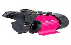 CRI Single Phase Domestic Monoblock Pump
