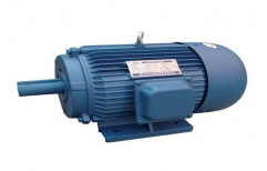 Siemens Single Phase Electric Motor, IP Rating: 44