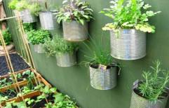 Vertical Terrace Gardening