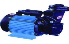 1.0 Hp Blue Domestic Self Priming Monoblock Pumpets, Electric
