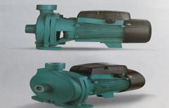 2 HP Three Phase Mild Steel Monoblock Pump