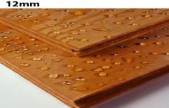 Brown 12mm Waterproof Plywood for Furniture