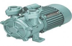 CRI Monoblock Domestic Pump
