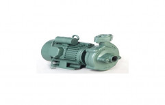 GREEN MONOBLOC PUMP, Warranty: 12 Months