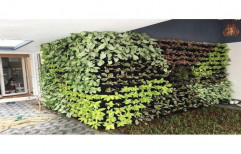 Green Natural Vertical Garden