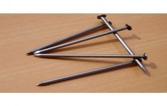 Iron Wire Nail, 2 Kg, Packaging Type: Box