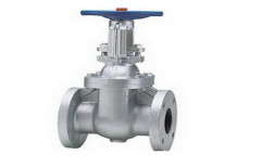 "Leader Cast Iron Gate Valves, Size: 2"" To 36"""
