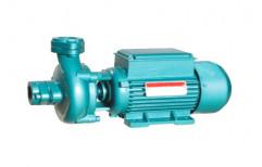 Silver Cast iron SDM - 52 Monoblock Pumps, 2900 Rpm