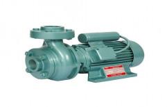 33 M Single Phase Centrifugal Monoblock Pump, 2900 Rpm