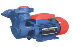 Single Phase Crompton Greaves Water Pump For Corporation Tuti, 2800rpm, 12 months