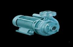 Electric Suguna Water Pump, 1 HP, Model Name/Number: SH-100